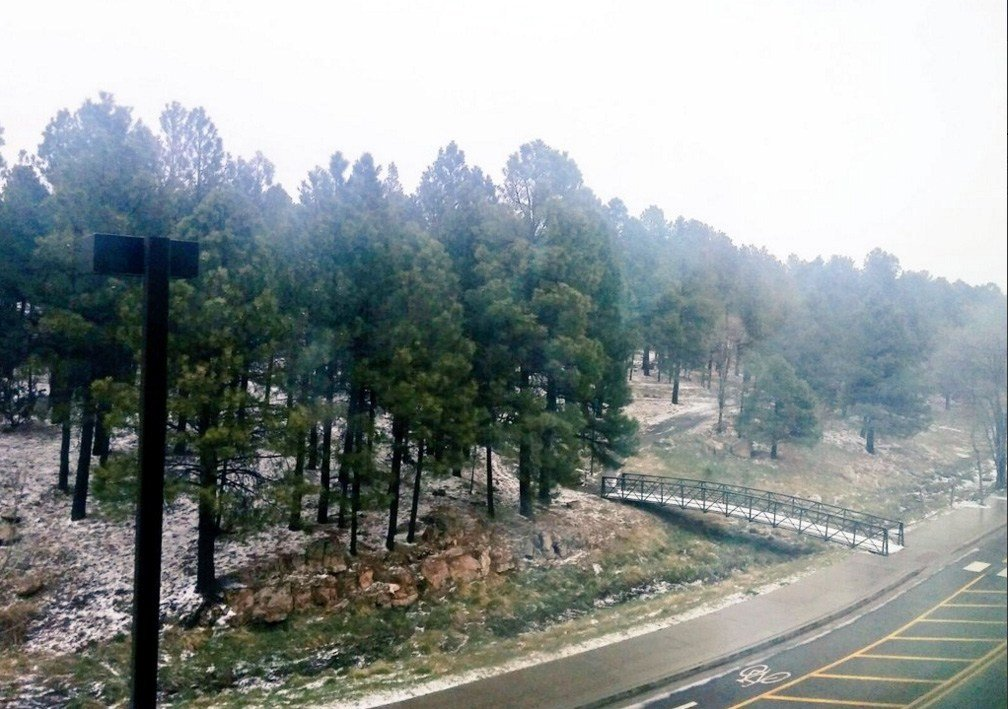 A dusting of snow was seen at Northern Arizona University. (Source: NAU)
