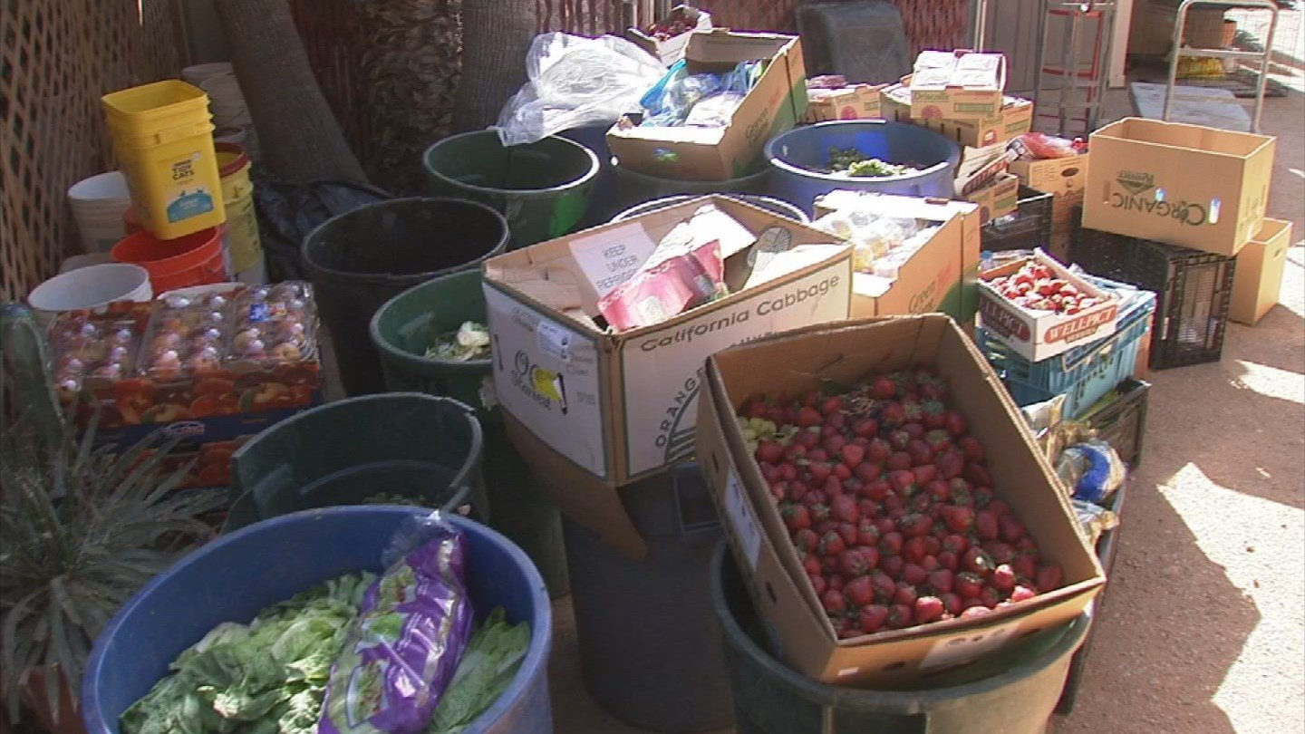 The Phoenix Herpetological Society went through 130,000 pounds of food last year (Source: KPHO/KTVK)