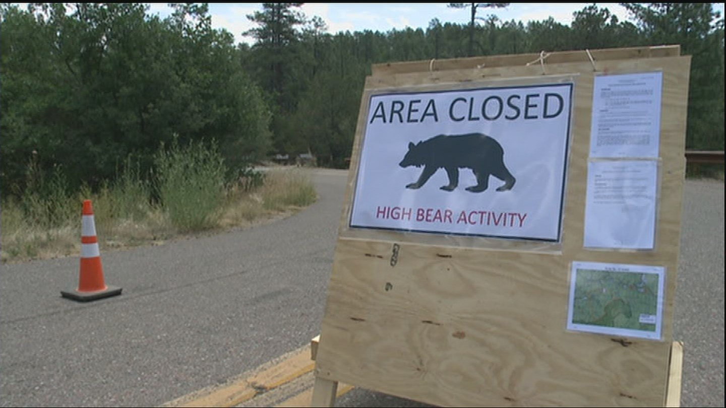 The U.S. Forest Service has closed the Pioneer Pass area. (Source: KPHO/KTVK)