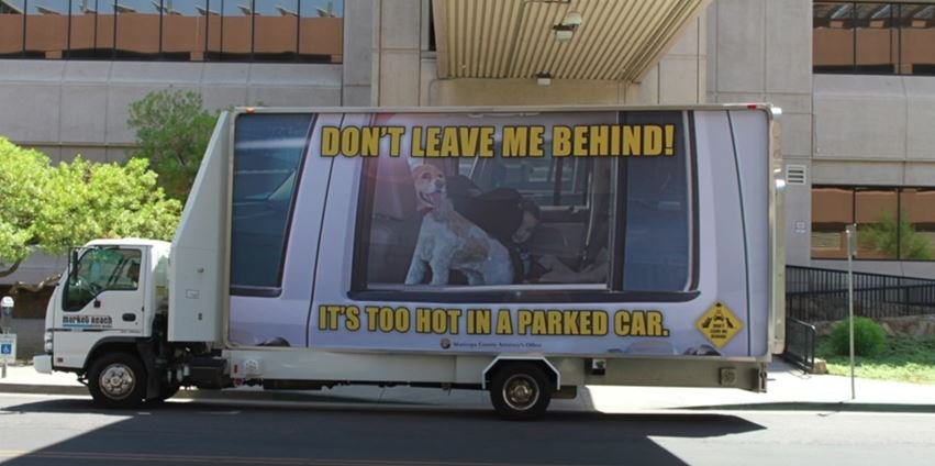 Don't leave me behind! (Source: Maricopa County Attorney's Office)
