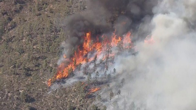 An aerial view of the Cedar Creek Fire on Wednesday, June 15 at 5 p.m. (Source: KPHO/KTVK)