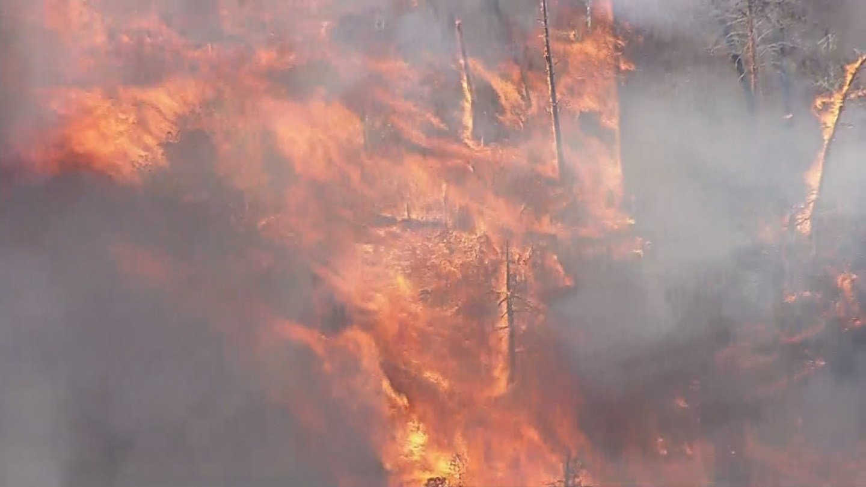 An aerial view of the Cedar Creek Fire on Wednesday, June 15 at 5 p.m. (Source: KPHO/KTVK)