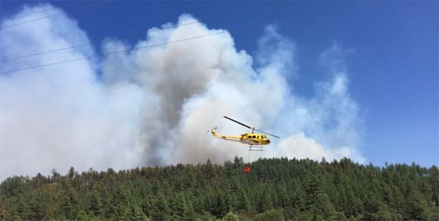 The southern portion of the Cedar Fire was very active through the night and is expected to remain active all day. (Source: Navajo County)