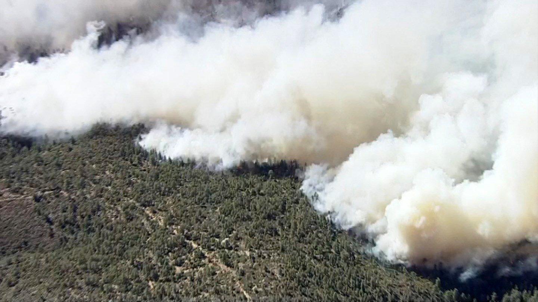 Cedar Fire has burned almost  43K acres