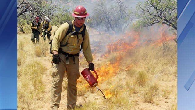 Firefighters perform burnout operations to battle the Brown Fire. (Source: AZ Forestry)