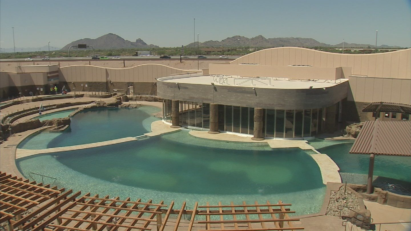 Dolphinaris is expected to open sometime in September. (Source: KPHO/KTVK)