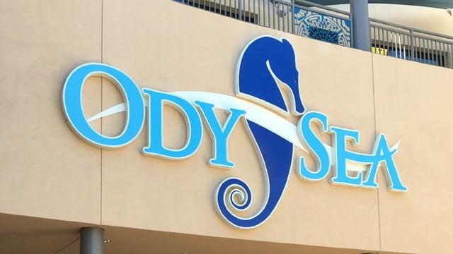 OdySea is located off Loop 101 and Via de Ventura near talking Stick Resort in Scottsdale.(Source: Jason Barry, KPHO/KTVK)