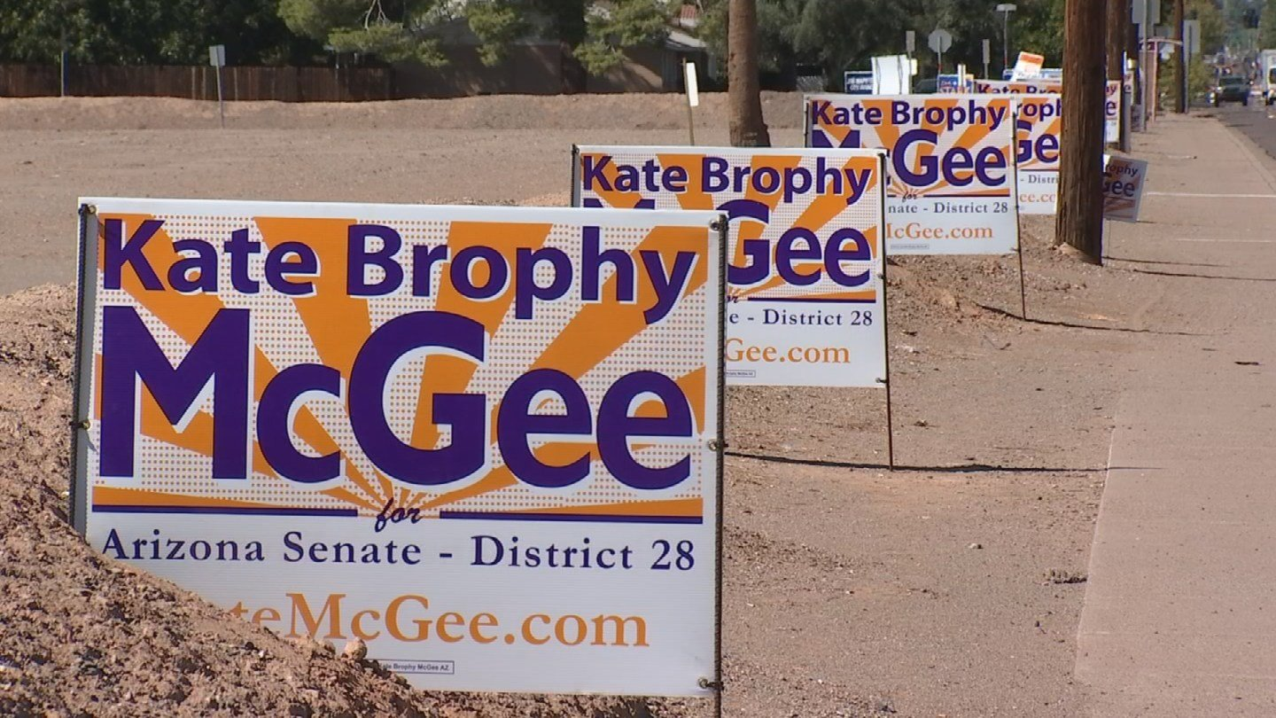 Linda Bayless is upset about the number of campaign signs on her property. (Source: KPHO/KTVK)