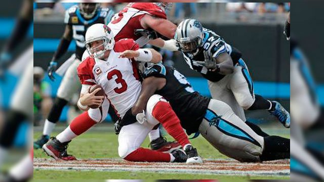 Arizona Cardinals' Carson Palmer (3) is sacked by Carolina Panthers' Kawann Short (99) in the second half of an NFL football game in Charlotte, N.C., Sunday, Oct. 30, 2016. (Source: AP Photo/Bob Leverone)