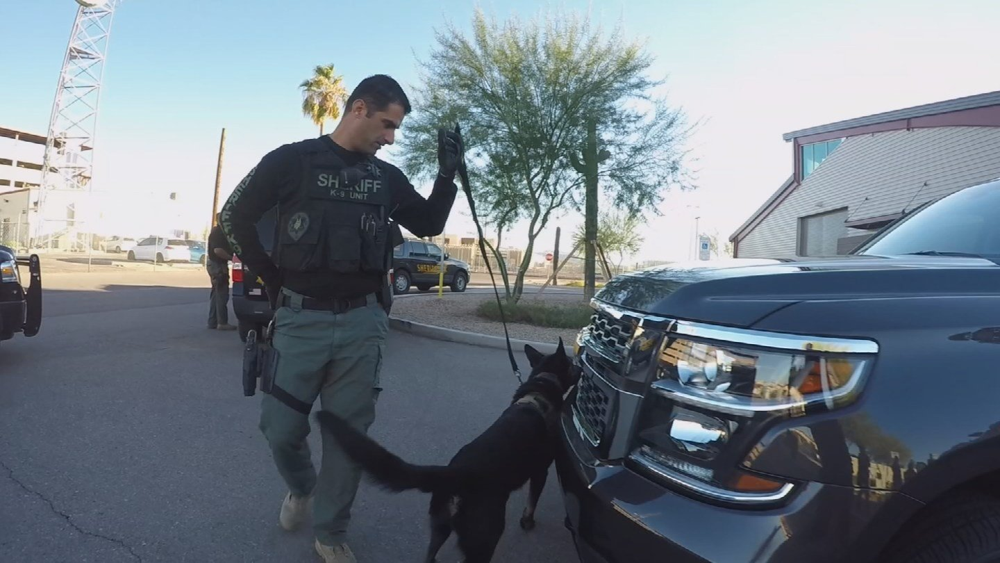 "Some law enforcement agencies call fentanyl an ""unprecedented threat"" and it's having an impact on K-9 officers. (Source: KPHO/KTVK)"