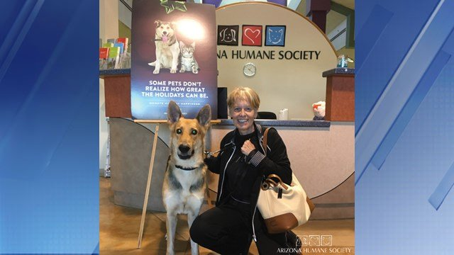 Bryan the dog was adopted on Wednesday. (Source: Arizona Humane Society)