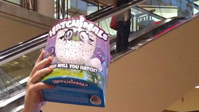 Parents desperately searching for Hatchimals in toy stores this Christmas