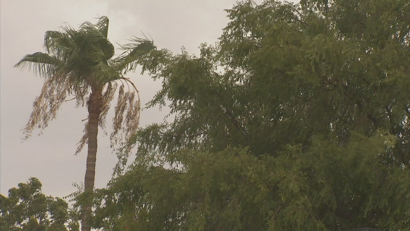 Arizona still needs more rain to get out of the drought. (Source: 3TV/CBS 5)