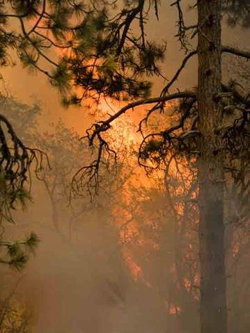 The Gladiator Fire covers 15,622 acres and on Wednesday was just 26 percent contained. By Andrew Michalscheck