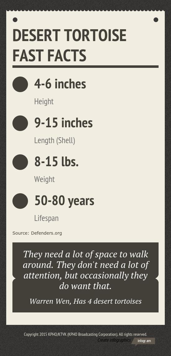 Desert tortoise fast facts