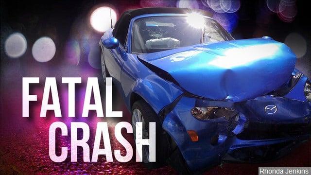 Michigan Fatal Car Accident November