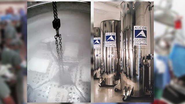 Containers are finally immersed in liquid nitrogen at a temperature of -196°C for long-term care. (Source: Alcor Life Extension Foundation)