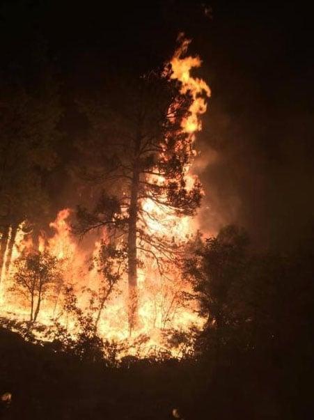 Cedar Fire (Source: inciweb)