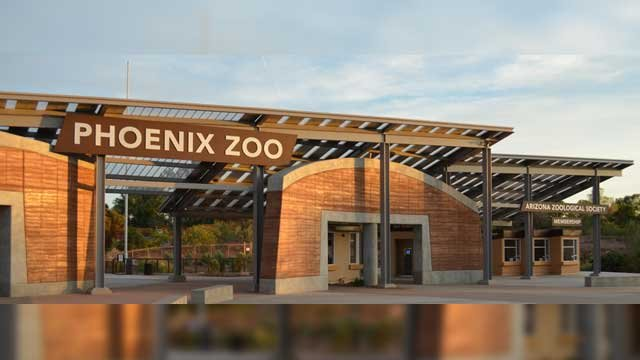 A Parent's Response to the Cincinnati Zoo Incident