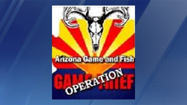 Public 39 s help sought in cow elk poaching case near for Az game and fish