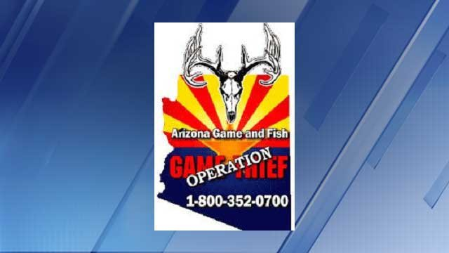 Information sought in poaching cases 3tv cbs 5 for Az game and fish