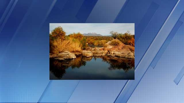 Best winter fishing holes in arizona arizona 39 s family for Lower salt river fishing