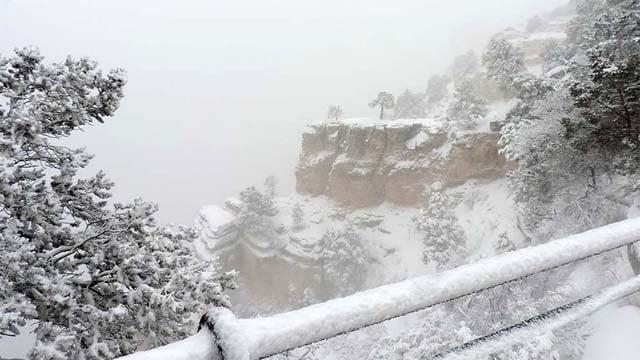 Slideshow: Feb. 1 snowstorm belts AZ High Country ...
